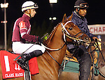 LOUISVILLE, KY -NOV 25: Gun Runner (Florent Geroux) in the post parade of the 142nd running of the Clark Handicap. Owner Winchell Thoroughbreds LLC (Ron Winchell) and Three Chimneys Farm (Zuleika B. Torrealba.) Trainer Steven M. Asmussen. By Candy Ride x Quiet Giant, by Giant's Causeway. (Photo by Mary M. Meek/Eclipse Sportswire/Getty Images)