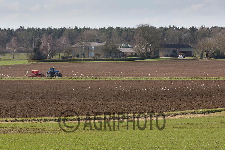 Agricultural landscape Lincolnshire<br /> Picture Tim Scrivener 07850 303986
