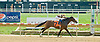 One Fast Look winning at Delaware Park on 9/20/12