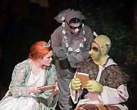 Shrek Public Gallery