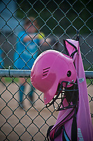 A pink batting helmet and softball carry bag hangs inside the fenced dugout during a youth softball game in Westerville, OH.