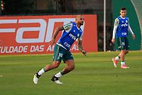 SAO PAULO, SP - 11.07.2017 - TREINO-PALMEIRAS - Jogadores do Palmeiras durante treino na tarde desta ter&ccedil;a-feira (11) na Academia de Futebol na Barra Funda, zona oeste da capital.<br /> <br /> (Fabricio Bomjardim / Brazil Photo Press)