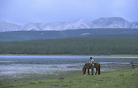 25 JUN 2002 - KHOVSGOL NATIONAL PARK, MONGOLIA - A horse grazes in the Khovsgol National Park. (PHOTO (C) NIGEL FARROW)