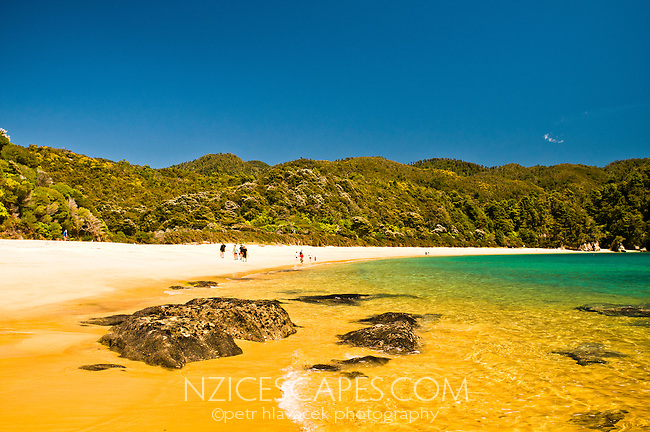 Group of hikers on beautiful golden beach at Ancorage on Abel Tasman Coastal Track - Abel Tasman National Park, Nelson Region, New Zealand