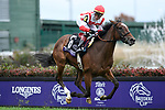 November 2, 2018: Newspaperofrecord #6, ridden by Irad Ortiz, Jr., wins the Juvenile Fillies Turf on Breeders' Cup World Championship Friday at Churchill Downs on November 2, 2018 in Louisville, Kentucky. Eric Patterson/Eclipse Sportswire/CSM