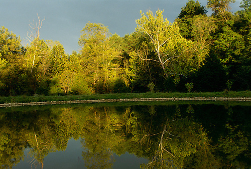 Sunlight shines on trees after the storm passes and creates beautiful reflections in the lake