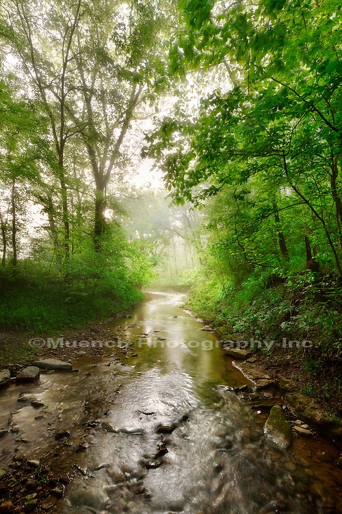 Shady Grove, Natchez Trace Parkway