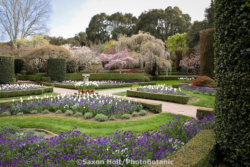 The Sundial Garden, formal beds with flowers ands tulip bulbs; Filoli, Wall Garden, formal estate garden, California