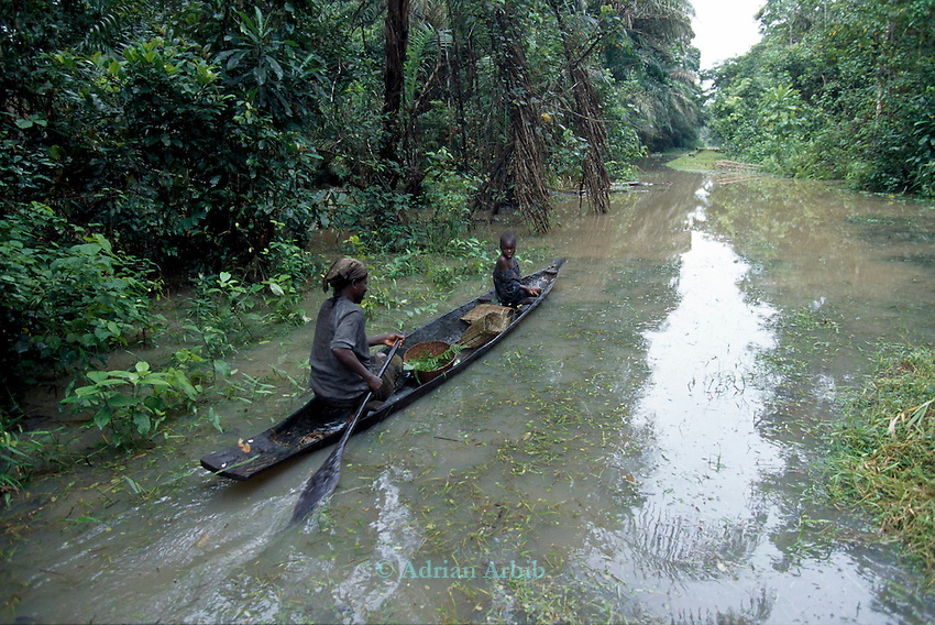 An Ijaw woman  paddles to  catch fish  from a communal forest around her village in the Delta region of Nigeria.  The fish catch has dropped dramatically as  a result of oil spillage from  a nearby Shell Oil extraction  pipe
