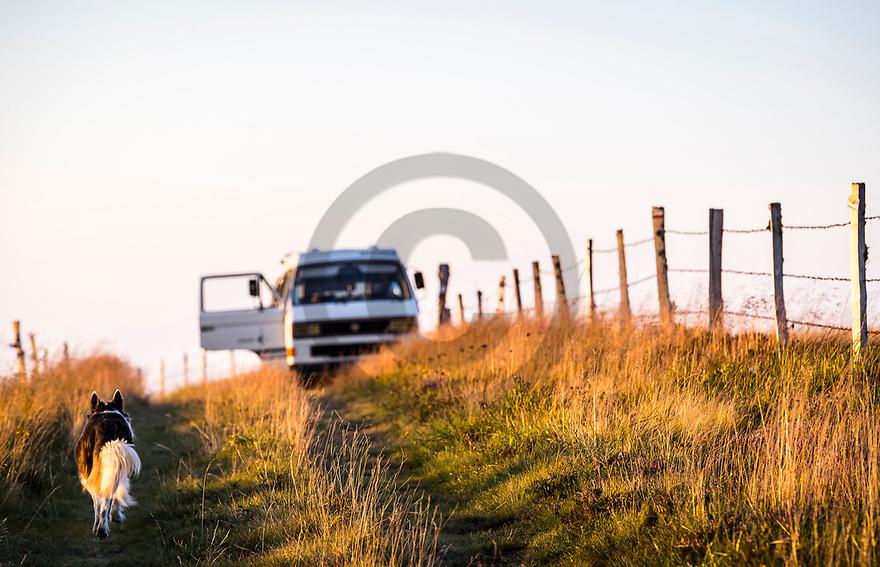 12/08/18 - PIERRE SUR HAUTE - PUY DE DOME - FRANCE - Road trip sur les estives des Hautes Chaumes - Photo Jerome CHABANNE