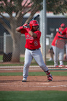 Los Angeles Angels catcher Mario Sanjur (2) during a Minor League Spring Training game against the Cincinnati Reds at the Cincinnati Reds Training Complex on March 15, 2018 in Goodyear, Arizona. (Zachary Lucy/Four Seam Images)