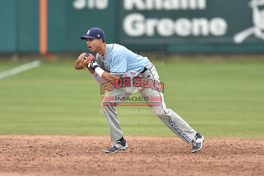 Main Black Bears shortstop Jeremy Pena (14) during a game against the Clemson Tigers at Doug Kingsmore Stadium on February 20, 2016 in Clemson, South Carolina. The Tigers defeated the Black Bears 9-4. (Tony Farlow/Four Seam Images)