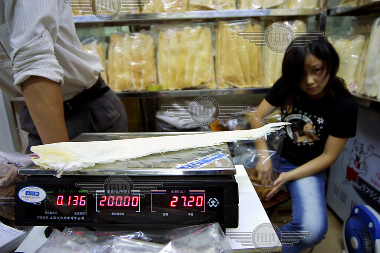 A single salted and dried shark fin is weighed on an electronic scale at the market.  It costs 27.20 Yuan, around GBP 1.80, although depending on the species of shark, prices can reach up to GBP 200 per kilogram.  The delicacy of sharks' fin soup is consumed widely in China, making trade in the fins a lucrative business....