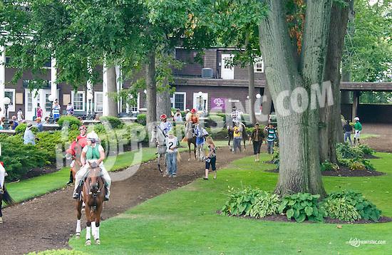 Royal Richess before The Buzz Brauninger Arabian Distaff Handicap (grade 1) at Delaware Park on 9/5/15