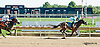 Sweet Boo winning at Delaware Park on 9/19/13