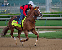 May 1, 2014:  Pablo Del Monte exercises in preparation for the Kentucky Derby at Churchill Downs in Louisville, KY. Jon Durr/ESW/CSM