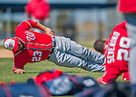 25 February 2016: Washington Nationals catcher Jhonatan Solano exercises during the first full squad Spring Training workout at Space Coast Stadium in Viera, Florida. Mandatory Credit: Ed Wolfstein Photo *** RAW (NEF) Image File Available ***