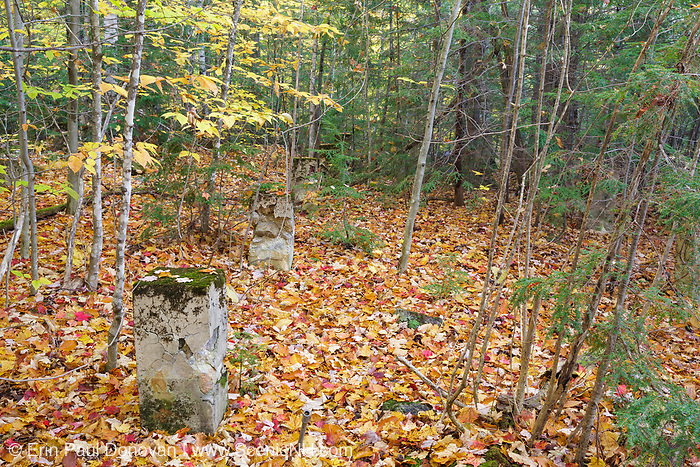 "Remnants of the dwellings along ""Railroad Row"" at the abandoned village of Livermore during the autumn months. This was a logging village in the late 19th and early 20th centuries along the Sawyer River Logging Railroad in Livermore, New Hampshire USA. The town and railroad was owned by the Saunders family."