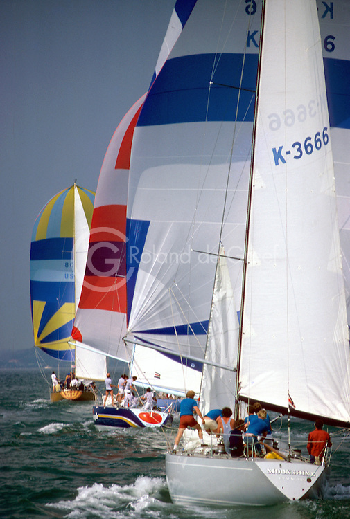 Semaine de Cowes 1977, Moonshine, Big Apple et Bay Bea