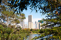 View of Sydney CBD from Sydney Royal Botanic Gardens, Australia. Sydney Royal Botanic Gardens are green, spacious and have stunning views across Sydney Harbour towards Sydney Opera House, Sydney Harbour Bridge and the CBD and Circular Quay areas.
