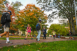 Photo by Kevin Bain/University Communications Photography