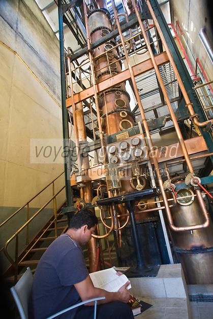 France/DOM/Martinique/ Saint-Pierre:  Distillerie Neisson -Rhum AOC de la Martinique - le distillateur  lit pendant la  distillation