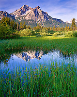 Sawtooth National Recreation Area, ID<br /> Morning sun on Mount McGown with reflections on a grassy wetland pond