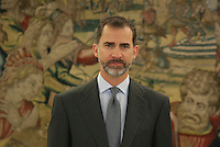 King Felipe VI of Spain during Royal Audiences at Zarzuela Palace in Madrid, Spain. January 27, 2015. (ALTERPHOTOS/Victor Blanco) /nortephoto.com<br />