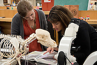Dr. Alicia Olivier alumni of CVM and faculty member, teaching first year students in MDL lab.