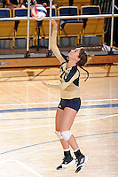11 September 2011:  FIU defensive specialist Rachel Fernandez (5) serves in the second set as the FIU Golden Panthers defeated the Florida A&M University Rattlers, 3-0 (25-10, 25-23, 26-24), at U.S Century Bank Arena in Miami, Florida.