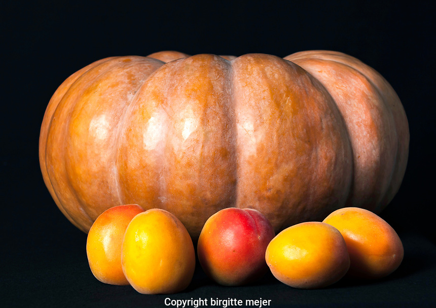 Pumpkin and 5 Peaches photographed in studio on black backdrop