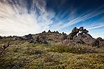 RAW Icelandic Nature