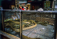 una gabbia con serpenti nel mercato alimentare degli animali <br />