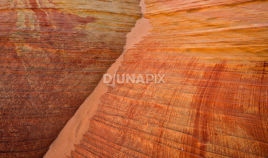 Vermillion Cliffs Wilderness