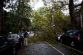 New York, New York<br /> September 16, 2010<br /> <br /> Park Slope after a severe storm and possible tornado. Downed trees between 7th and 8th Avenue on 3th Street.