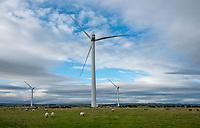 Nabs Ridge wind farm near Harrogate, North Yorkshire.