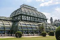 Palmenhaus in derSommerresidenz Schloss Schönbrunn, Wien, Österreich, UNESCO-Weltkulturerbe<br /> palm house in summerresidence Schloss Schönbrunn, Vienna, Austria, world heritage