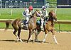 Golden Odessy before The Delaware Park Season Opener Stakes at Delaware Park on 5/19/12