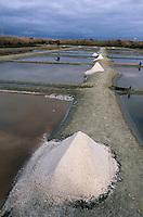 Europe/France/Poitou-Charentes/17/Charente-Maritime/Loix-en-Ré: Récolte du sel dans un marais salant à l'Anse du Fier d'Ars