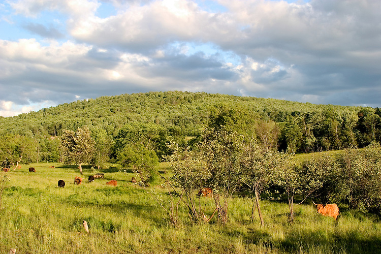 Along the wine route in Knowlton and the Eastern Townships of Quebec, Canada