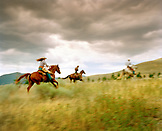 USA, Montana, people riding horses in the field at dusk, Gallatin National Forest, Emigrant