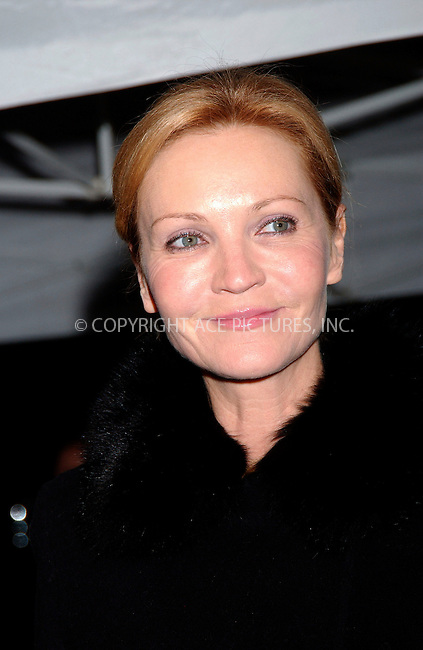 WWW.ACEPIXS.COM . . . . .....New York City. December 2, 2007.....Actress Joan Allen attends 'The Golden Compass' premiere at the Ziegfeld Theater in New York City...  ....Please byline: Kristin Callahan - ACEPIXS.COM..... *** ***..Ace Pictures, Inc:  ..Philip Vaughan (646) 769 0430..e-mail: info@acepixs.com..web: http://www.acepixs.com