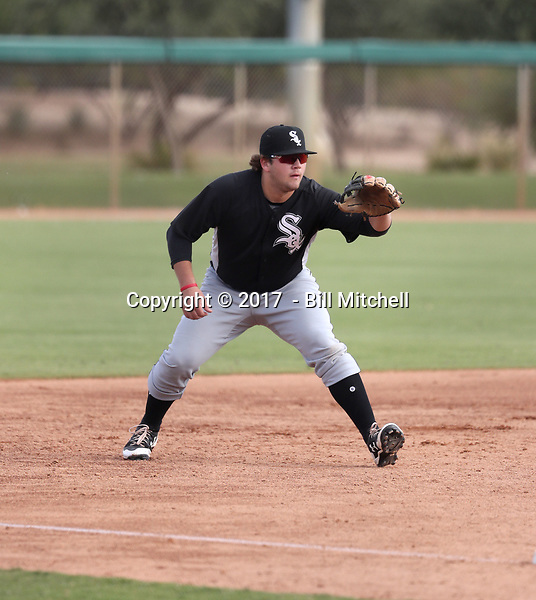 Jake Burger - 2017 AIL White Sox (Bill Mitchell)