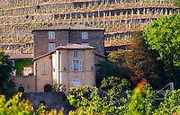 The Chateau Grillet, that has its own appellation close to Condrieu with its vineyard behind.   Château Grillet, Verin, Rhone, France, Europe