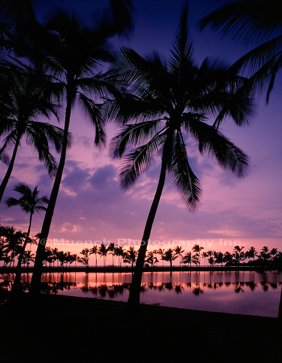 """Waikoloa Coast, Hawaii   HAWAII"""