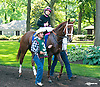 I'm A Chatterbox before The Obeah Stakes at Delaware Park on 6/11/16