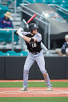 Matthew Albanese (12) of the Bryant Bulldogs at bat against the Coastal Carolina Chanticleers at Springs Brooks Stadium on March 13, 2015 in Charlotte, North Carolina.  The Chanticleers defeated the Bulldogs 7-2.  (Brian Westerholt/Four Seam Images)