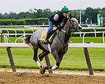 JUNE 05, 2019 : Tacitus morning workouts for Belmont Stakes contenders at Belmont Park, on June 5, 2019 in Elmont, NY.  Sue Kawczynski_ESW_CSM