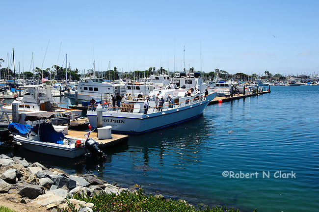 San Diego Sport Fishing