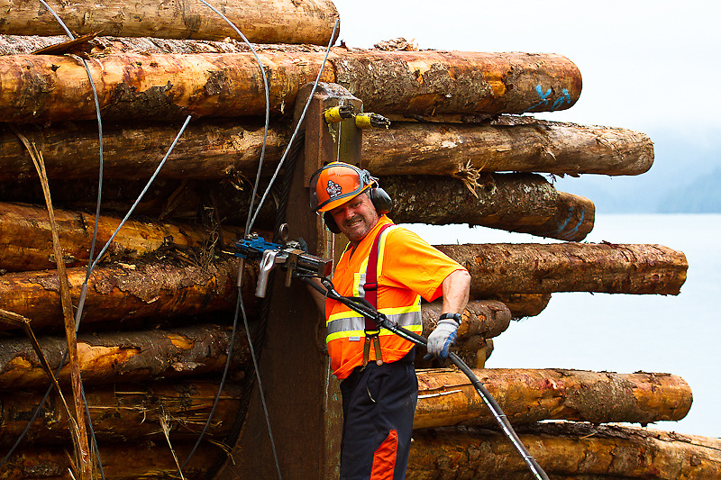 Steve Holt (bucker/bundler) prepares to cinch a bundle of export wood (low market value second growth hemlock and fir) bound for China. The bundle will be pushed into the water to await transport overseas. Chamiss Bay, Vancouver Island, July 2012.